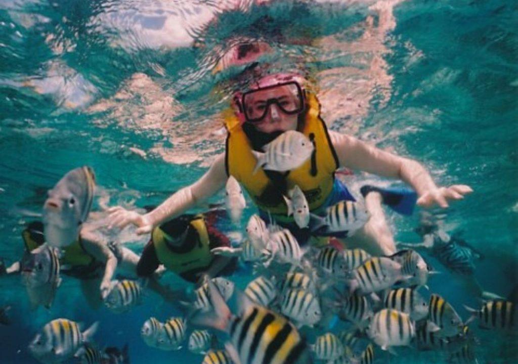 El snorkel