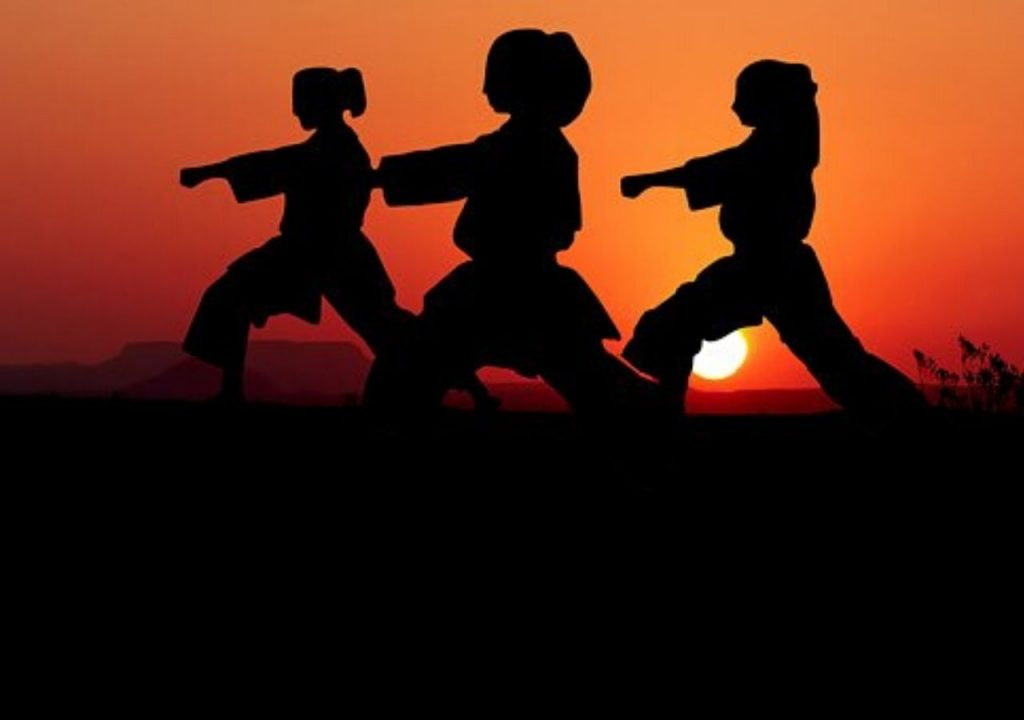 ¿Qué es el Karate Do?