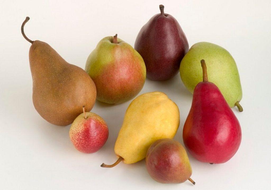 En la base del tallo de la pera está la clave de su sabor y jugosidad